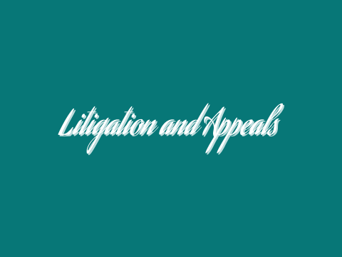 Litigation and Appeals